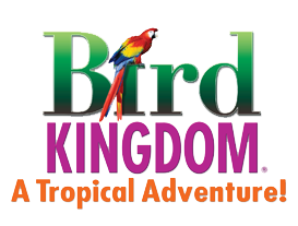 Bird Kingdom Promo Code