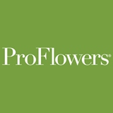Proflowers Coupon Code 30 Off